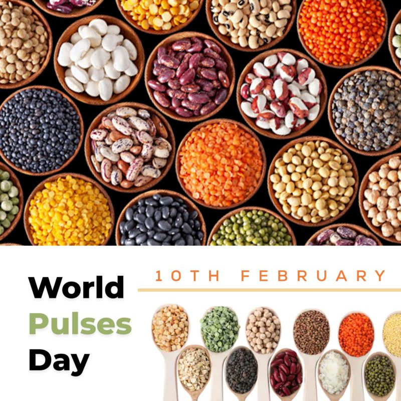 World Pulses Day